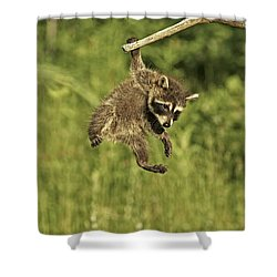 Hanging Out Shower Curtain by Jack Milchanowski