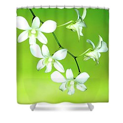 Hanging White Orchids Shower Curtain by Lehua Pekelo-Stearns