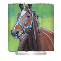 Hanover Shoe Farm Horse Shower Curtain