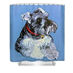 Shower Curtain featuring the painting Hans The Schnauzer Original Painting Forsale by Bob and Nadine Johnston