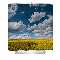 Happiness Shower Curtain by Davorin Mance