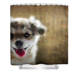 Happiness Is A Little Puppy Shower Curtain by Lisa Knechtel