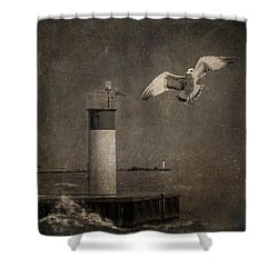 Happy And Free As A Seagull Shower Curtain