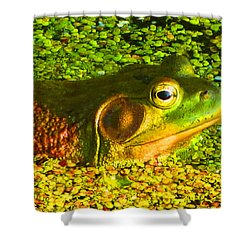 Happy As A Frog In A Pond Shower Curtain