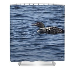 Happy As A Loon Shower Curtain