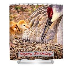 Happy Birthday Card Shower Curtain