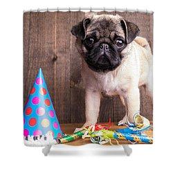 Happy Birthday Cute Pug Puppy Shower Curtain by Edward Fielding