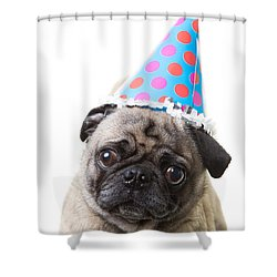 Happy Birthday Pug Card Shower Curtain by Edward Fielding