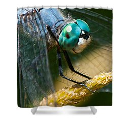 Happy Blue Dragonfly Shower Curtain