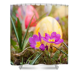 Shower Curtain featuring the photograph Happy Easter by Christine Sponchia