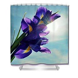 Shower Curtain featuring the photograph Happy Easter  by Marija Djedovic