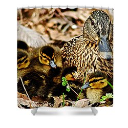 Happy Family Shower Curtain by Frozen in Time Fine Art Photography