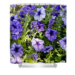 Shower Curtain featuring the photograph Happy Flowers by Wilma  Birdwell