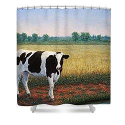 Happy Holstein Shower Curtain
