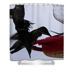 Shower Curtain featuring the photograph Happy Hour by Nick Kirby
