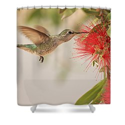 Happy Humming Shower Curtain