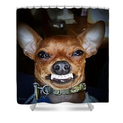 Happy Max Shower Curtain