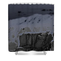 Happy On The Edge Shower Curtain by Jeremy Rhoades
