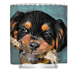Happy Puppy Shower Curtain by Angela A Stanton