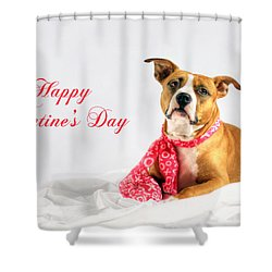 Fifty Shades Of Pink - Happy Valentine's Day Shower Curtain