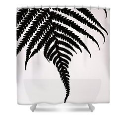 Hapu'u Frond Leaf Silhouette Shower Curtain