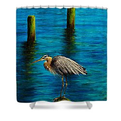 Harbor Sentry Shower Curtain by C Steele