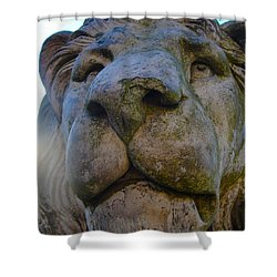 Harlaxton Lions Shower Curtain