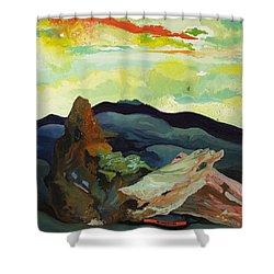 Harmonica Under Firewood Shower Curtain by Joseph Demaree