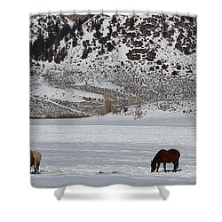 Shower Curtain featuring the photograph Harmony by Fiona Kennard