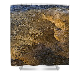 Shower Curtain featuring the photograph Harmony by Nadalyn Larsen