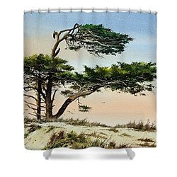 Harmony Of Nature Shower Curtain by James Williamson
