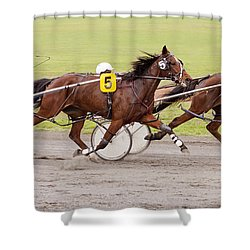 Harness Racing Shower Curtain by Michelle Wrighton