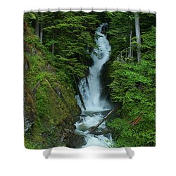 Shower Curtain featuring the photograph Harrison Lake Road Falls by Rod Wiens