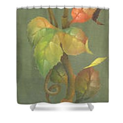 Harvest Grapevine Shower Curtain