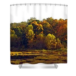Shower Curtain featuring the digital art Harvest Of Color by I'ina Van Lawick