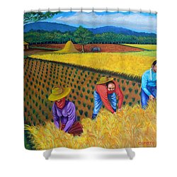 Harvest Season Shower Curtain