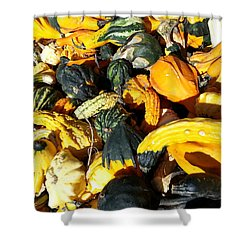 Shower Curtain featuring the photograph Harvest Squash by Caryl J Bohn