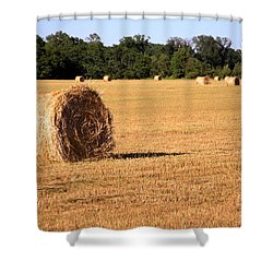 Shower Curtain featuring the photograph Harvest Time by Gordon Elwell