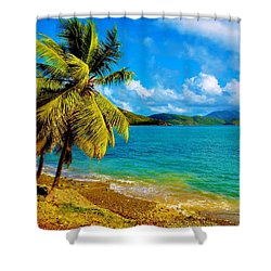 Haulover Bay Usvi Shower Curtain