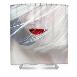 Haunted Dreams Shower Curtain
