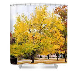 Havana Landscape Shower Curtain