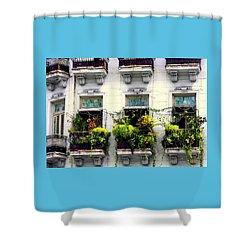 Havana Windows Shower Curtain