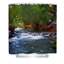 Havasu Creek Shower Curtain