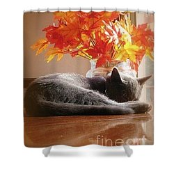 Have A Restful Thanksgiving Shower Curtain by Jennifer E Doll