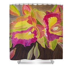 Shower Curtain featuring the painting Hawaiian Compassion by Meryl Goudey