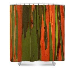 Hawaiian Eucalyptus Shower Curtain by James Eddy