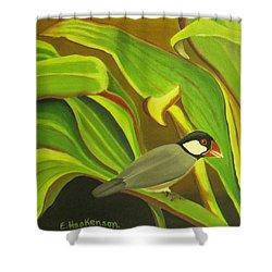 Hawaiian Finch On Tea Leaves Shower Curtain by Elaine Haakenson