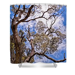 Hawaiian Sky Shower Curtain by Jim Thompson