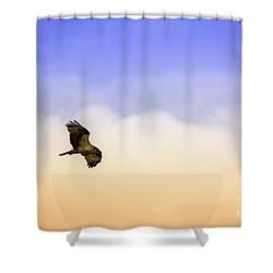 Hawk Over Head Shower Curtain