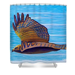 Hawk Speed Shower Curtain by Brian  Commerford